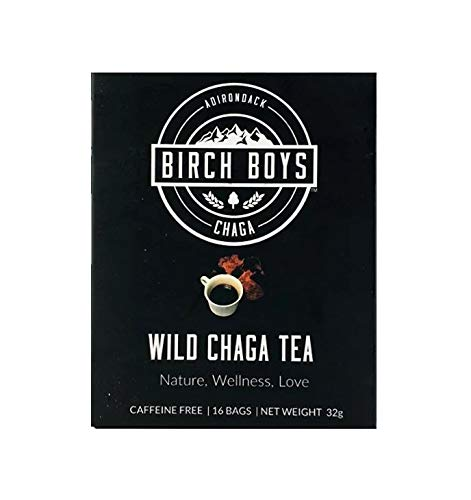Chaga Tea Bags (16 Count) - Wild Crafted Antioxidant Morning Tea