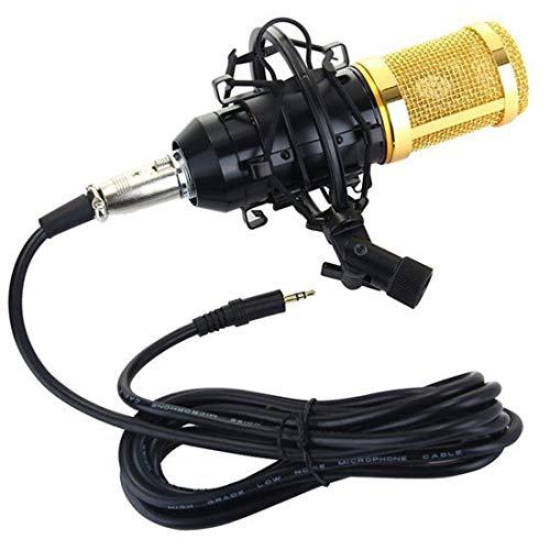 Kondensator Mikrofon •Standmikrofon für Gesangs- und Sprachaufnahmen • PC & Studio • Voice Desktop Mikrofonstand für Laptop Computer