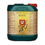 House and Garden Bud XL - Estimulador de flores (5 L)