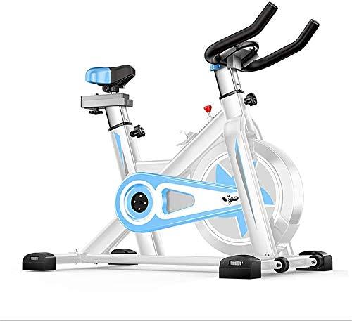 XJWWW-URG Bicicleta estática, Ciclismo Indoor Bicicleta estacionaria con Monitor de Ritmo cardíaco y Pantalla LCD, cómodo cojín de Asiento URG