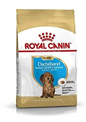 For Dachshunds up to 10 months Promotes safe growth Stool and odour reduction Strong natural defences