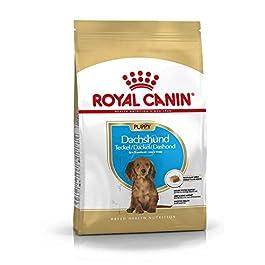 Royal Canin Dog Food Dachshund Junior 30 Dry Mix 1.5kg
