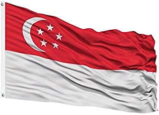 Best checkered flag singapore Reviews