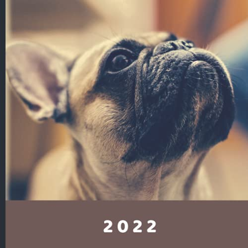 2022: January 2022 - December 2022 | 12 Month Calendar | Monthly Photo Calendar | Monthly Calendar with U.S./UK/ Canadian/Christian/Jewish/Muslim Holidays | Adorable French Bulldog Photo Book