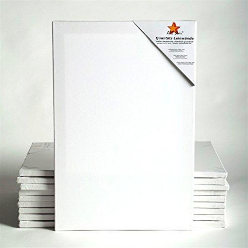 BK BILDERRAHMEN KOLMER 10 Art-Star LEINWÄNDE AUF KEILRAHMEN 24x30 cm | malfertig, 100% Baumwolle, ideal für Mal-Einsteiger