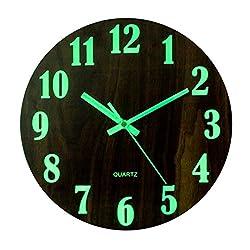 Petforu Night Light Function Wall Clock 12-Inch Glow in The Dark Battery Operated Silent