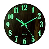 Petforu Night Light Function Wall Clock 12 inches Glow in The Dark Battery Operated Silent