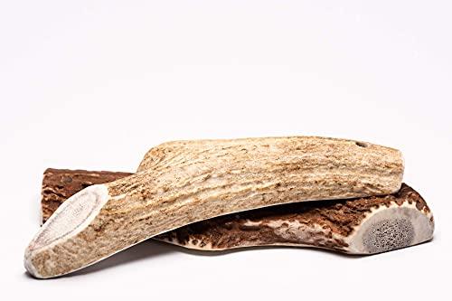 Deer Antler Cane masticabile - Corna di Cervo per Cani, masticazione Naturale di Lunga Durata (Set da 2, Taglia L)