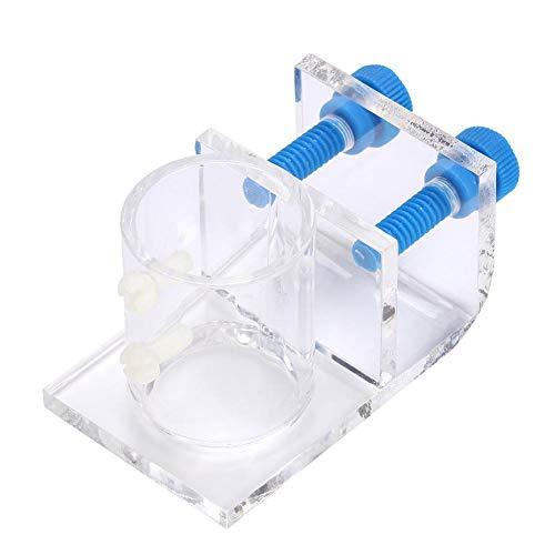 水槽 パイプホルダークランプ 固定 水ホース 固定クリップ 水槽用チューブクリップ 取り付け具 ダー 金魚鉢 水槽用 配管 透明(ダブルホールフィクスチャー)