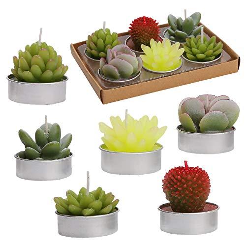 QIANZI 6 velas de cactus Tealight hechas a mano delicadas velas de cactus suculentas para fiestas, bodas, spa, decoración del hogar, regalos