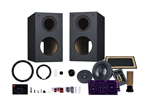 HiVi - DIY 2.2A – 2-Way Bookshelf Speaker Kit - Braced Wooden Cabinet - Pair – Black – 2-Year Warranty - SwansKits