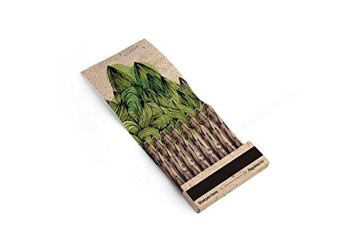 Kikkerland Tree Friendly Pencils (4320)