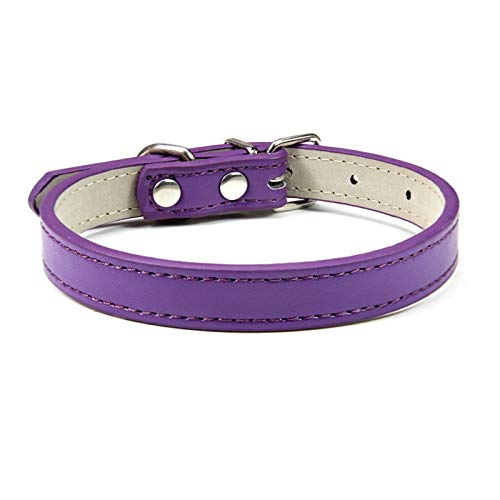 DZSW Cmdzsw Collar ajustable para mascotas Collar de gato y perro Collar de cuero para mascotas (color: morado, tamaño: 1,5 m)