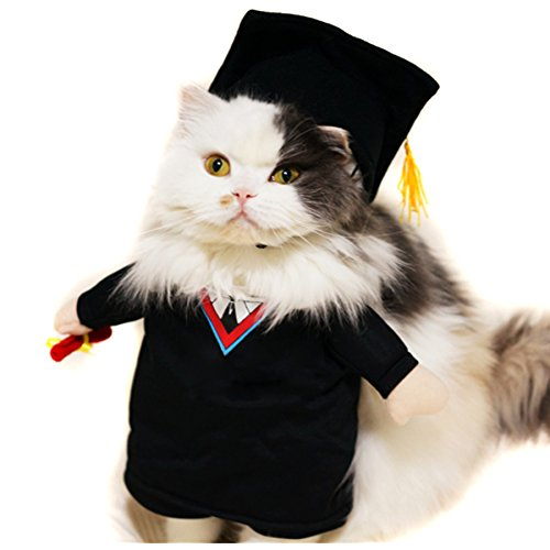 Alfie Pet – Kade The Graduate for Party Halloween Special Events Costume – Size: Small
