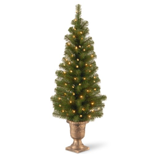 National Tree Company Pre-lit Artificial Tree For Entrances and Christmas| Includes Pre-strung White Lights | Montclair Spruce - 4 ft