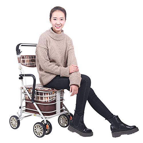 Shopping Bags Walker Small Cart Old Cart Grocery Shopping Cart Wheelchair Pushable Can Sit Elderly Folding Walker Give The Best Gift for The Elderly Shopping (Color : Silver)