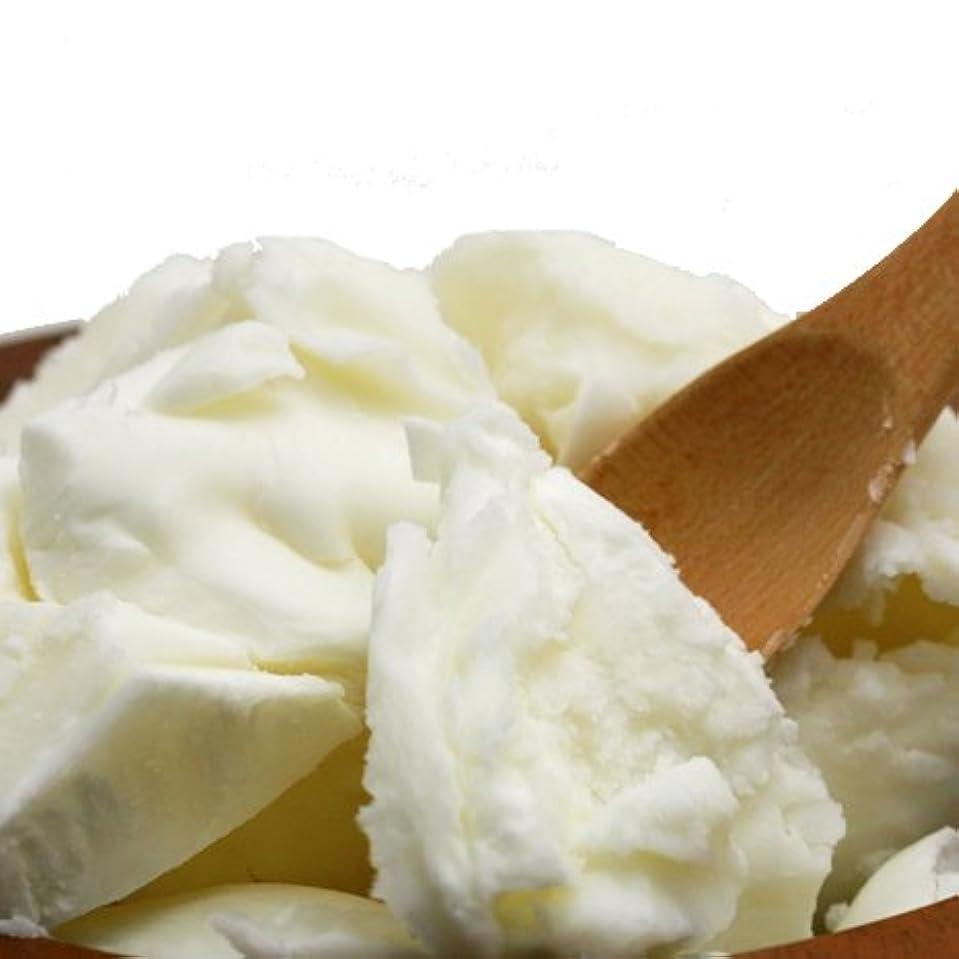 するだろう同意メダリストオーガニック 精製シアバター 100g シア脂 【手作り石鹸/手作りコスメ/手作り化粧品】