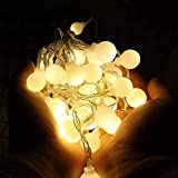 Satyam Kraft 20 Bulb String LED Fairy Lights for Home and Outdoor