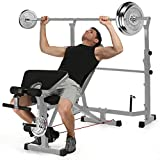 elifine Adjustable Olympic Weight Bench Power Tower Workout Dip Station with Preacher Curl Leg Developer Multi-Functional Weight Bench Set for Indoor Gym Home Fitness Exercise (Gray)