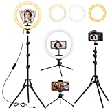 13 inch Ring Light with Tripod and Desk Stand, Adjustable LED Circle Light with Extendable Tripod 59', USB Powered, Phone Holder for iPhone Tiktok Streaming, Video Recording, Zoom Meeting, Camera