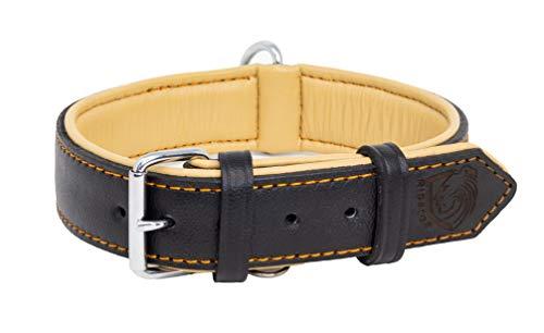 Riparo Collar de perro acolchado de cuero genuino Collar de mascota ajustable K-9 fuerte (S: 1,9cm de ancho para cuello de 28cm - 34,3cm, Hilo Negro/Naranja)
