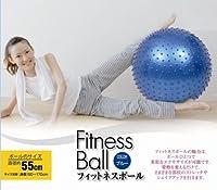 ウィキャン フィットネスボール ブルー-574