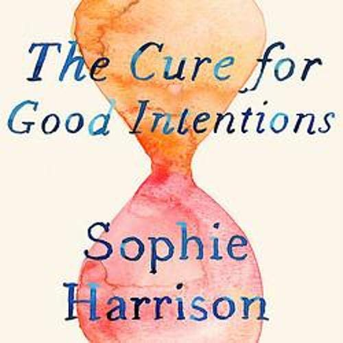 The Cure for Good Intentions cover art