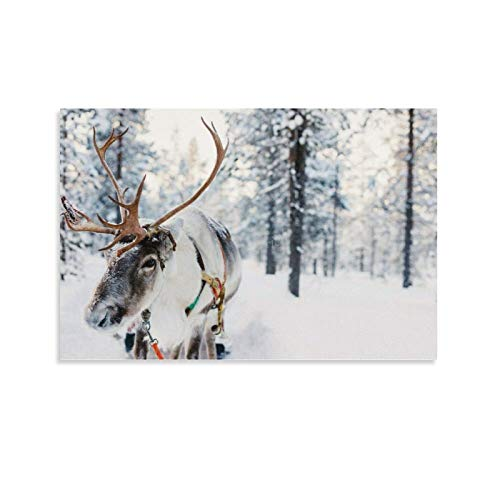 Cards with Envelopes Blank Inside, Winter Forest Reindeer Christmas Birthday Greeting Card 10x7 Inches