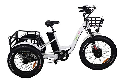 Rubicon Electric Fat Tire Tricycle/Trike Bike for Adult, 500W 48V e-Bike with Lithium Rechargeable Battery, Oversize Rear Cargo and Front Basket for Heavy-Duty Carrying or Delivery (Model 2)