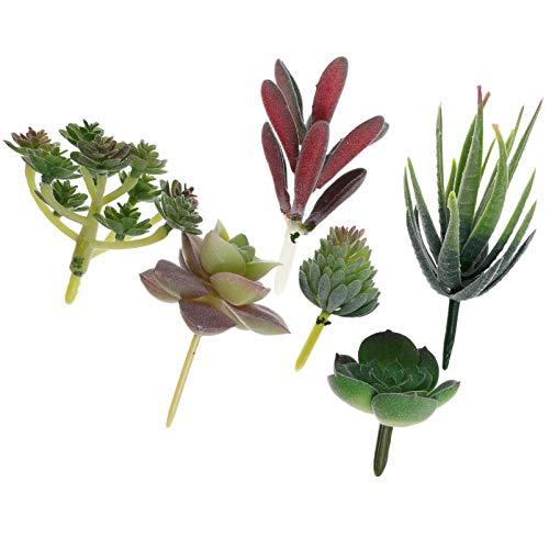 Kisangel - 6 mini piante grasse artificiali assortite senza vaso decorativo, fiori artificiali realistici, fiori finti, steli di cactus bonsai