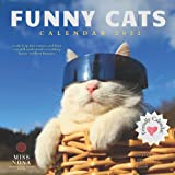 Funny Cats Calendar 2022: August 2021 - December 2022 Monthly Calendar Planner With Funny Pictures