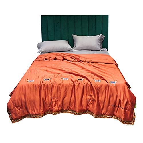 HOUMEL El Verano se refresca edredón Doble enfrentado 1,5-Doble TOG, Tencel Edredón Lavable a máquina de Moda edredones lecho sofá/un sofá de la Manta 014 (Color : A, Size : Double)