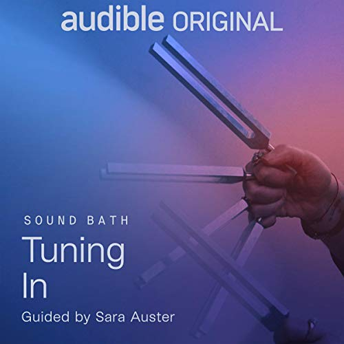Tuning In Audiobook By Sara Auster cover art