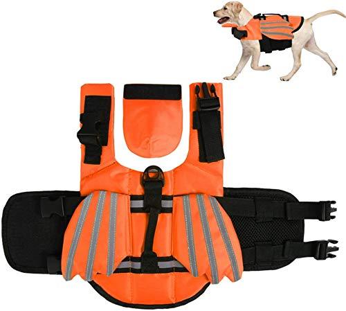 FR&RF Chaleco salvavidas para perro con alas salvavidas para perro salvavidas salvavidas salvavidas traje de baño seguridad en la piscina, playa, barco, naranja, M