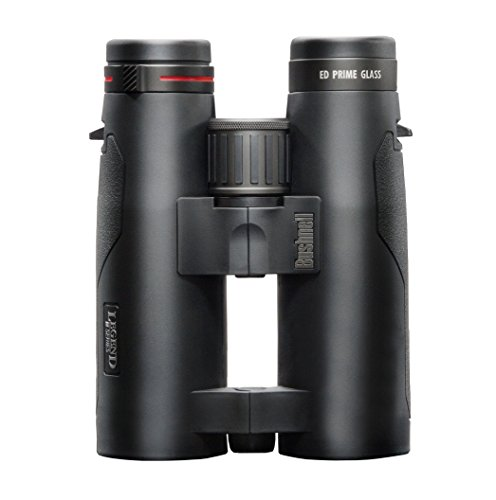 Bushnell Fernglas Legend M-Series Open Bridge, Schwarz, 199104