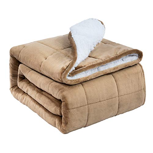 BUZIO Sherpa Fleece Weighted Blanket para niños y Adultos, Manta Gruesa de...