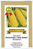 Zuckermais - Mais -Tasty Sweet F1