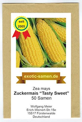 Zuckermais - Mais -Tasty Sweet F1 Hybride - sehr süß - früh reifend - 50 Samen