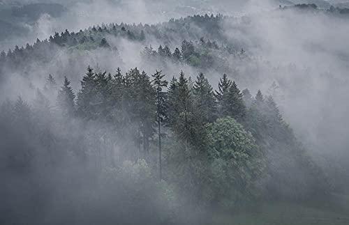 FFCLZ Bosque de árboles de Niebla Puzzles,Jigsaw Puzzle,Adult Green Wooden Puzzle/Rompecabezas para Adultos/Puzzle 1500 Piezas