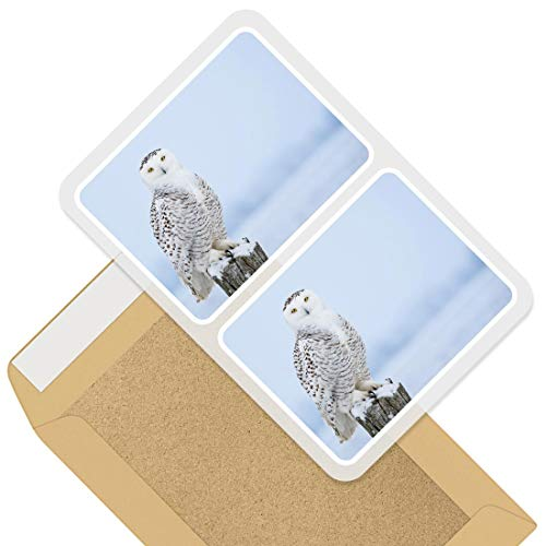 Rectangle Stickers (Set of 2) 10cm - Majestic White Owl Bird Winter Decals for Laptops,Tablets,Luggage,Scrap Booking,Fridges, 45655