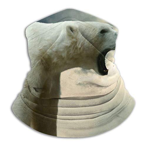 IZOU Polar bear sitting thick Neck Gaiter Face Mask,Multifunction for Man Women seasons Magic Scarf Bandana Balaclava