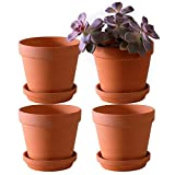 Large Terra Cotta Pots with Saucer- 4-Pack Large 6.3'' Orchid pots with Holes,Clay Ceramic Flower Pot Planters with Tray for Indoor, Outdoor Plant, Succulent Display