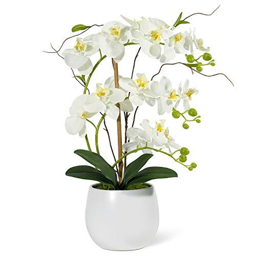 RENATUHOM Künstliche Orchidee weiße Blumen gefälschte Orchidee Blumenarrangements künstliche Pflanze Bonsai mit weißer Vase lebendige Pflanze Tischdekoration Phalaenopsisis Heim Dekoration