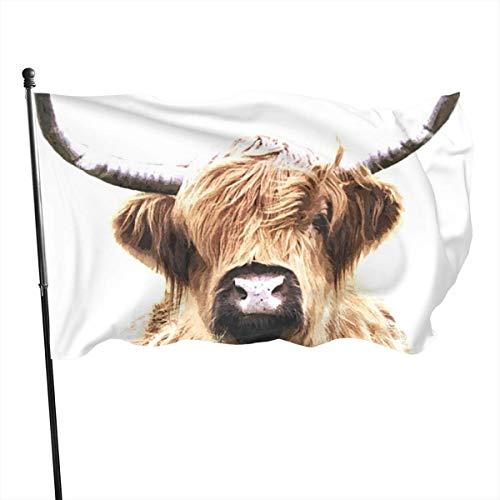 N/A USA Guard Vlag Banner Home Vlaggen Friese vee Fade Resistant Voortuin voor Alle seizoenen Patio College Decoratieve 3x5 Ft
