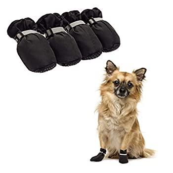 Best winter boots for pugs Reviews