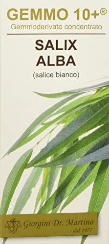Dr. Giorgini Integratore Alimentare, Salice Gemmoderivato Concentrato Liquido Analcoolico - 100 ml