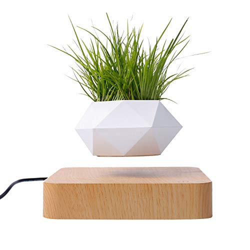Levitating Floating Plant Pot,Magnetic Levitation Flower Planters With Wooden Base,Air Plants For Home Office Garden Christmas Decorations,Creative Gifts For Women Men (Light color)