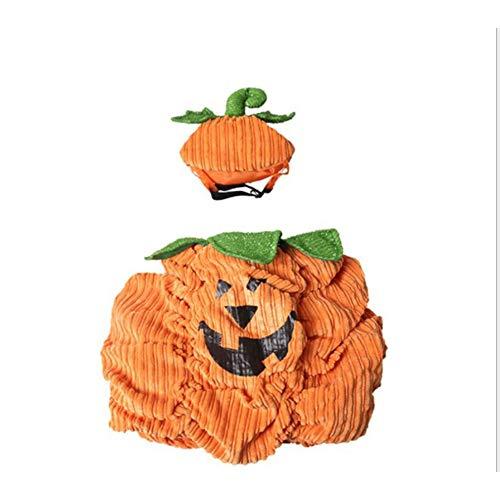 Amyove Halloween Kürbis Haustier Anzug Warme Halloween Cosplay Kürbis Anzüge Set für Haustier Hund Katzen tragen Kürbis Monster Set L