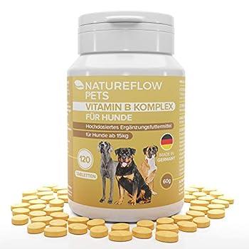 Complexe Vitamine B Chien - Vitamines B pour chien à forte dose à partir de 15kg, 120 comprimés de vitamines, Avec K3, de l'acide folique, du calcium et de la biotine, Fabriqué en Allemagne