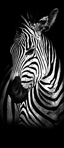 Welt-der-Traum-vliesfotobehang, panel, deurfotobehang, behang, vlieszebra | Door de Wall Mural Photo Wall Sticker 11767_VET-MS | zebra dier paard natuur Natuur VET (211 cm. x 91cm.) zwart en wit.